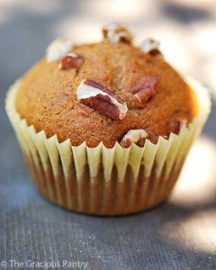 clean-eating-banana-muffins-v-2